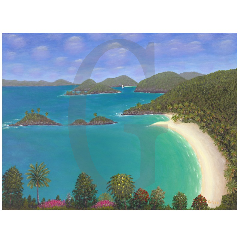 William Lee Golden Painting- Trunk Bay